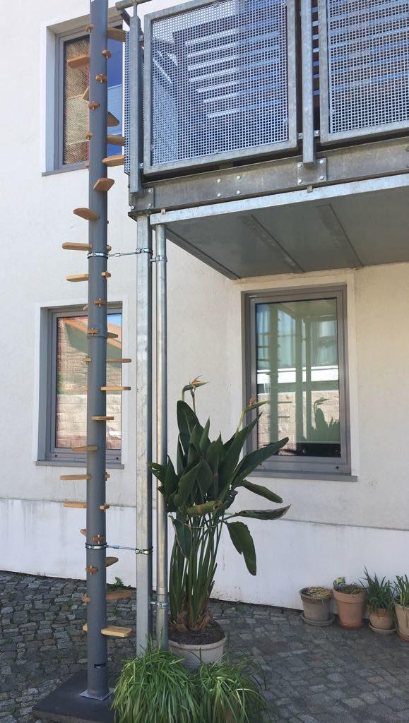 Katzenleiter für Balkon cattrip Nature